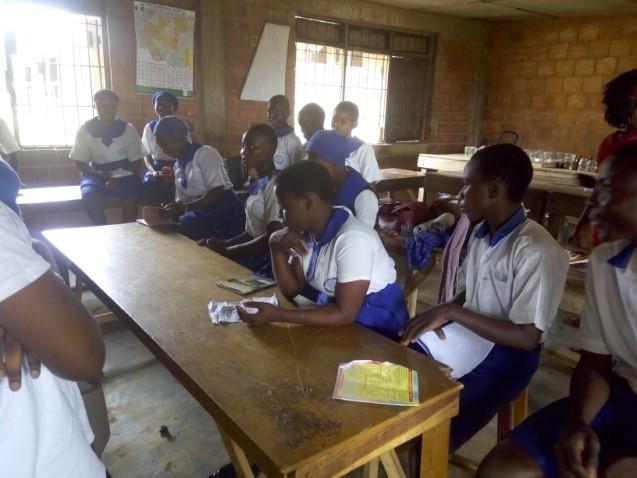 Scholars mentoring students